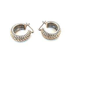 Stainless small hoop earrings